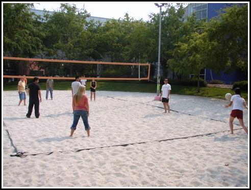 volleyball googleplex