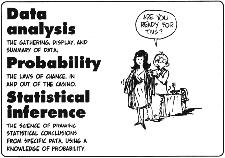 the cartoon guide to statistics