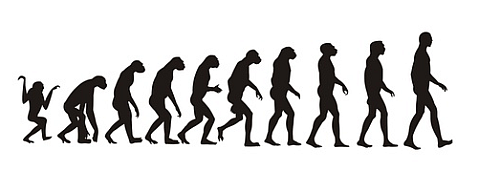 Image result for evolution and change