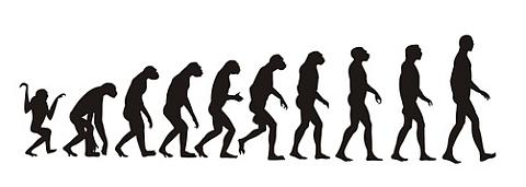 evolution progress change