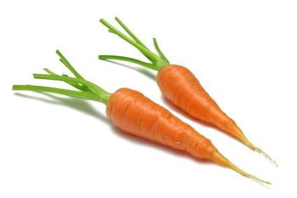 two yummy carrots