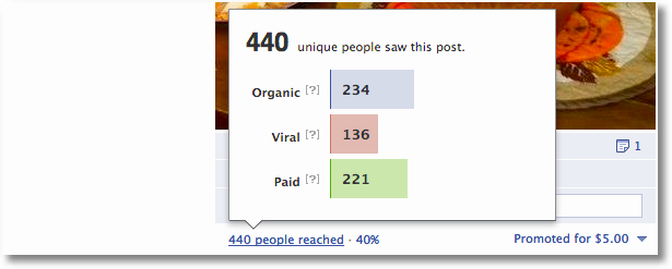 facebook promoted posts results